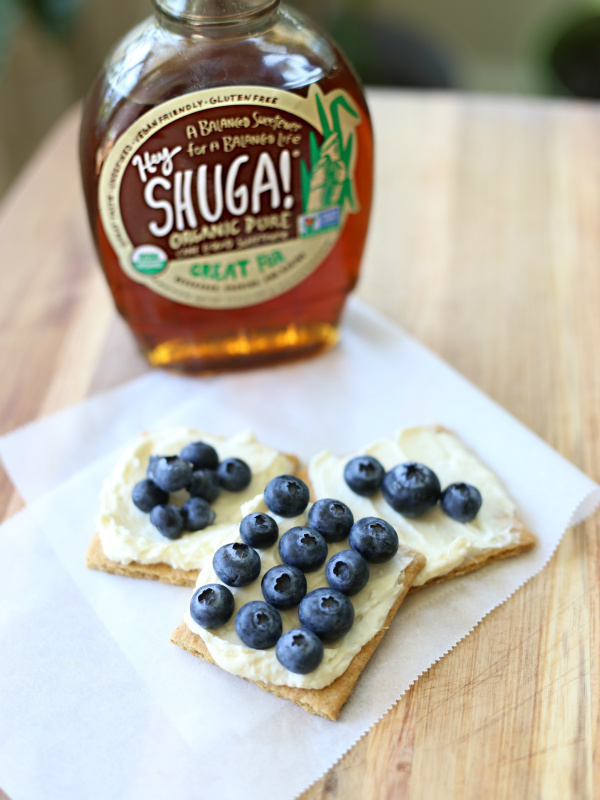 No-Bake Blueberry Cheesecake Bites | The SHUGA! Way