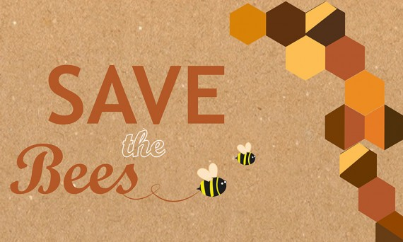 Save the Bees cover