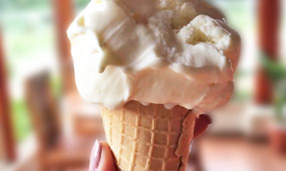 ice_cream_vanilla